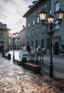Hostel Taurus, Ostelli  Cracovia - big - 54