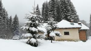 Cabana Pietricica, Chalets  Dîmbovicioara - big - 127
