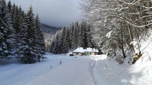Cabana Pietricica, Chalets  Dîmbovicioara - big - 1
