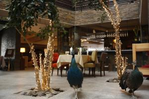 The Corporate Hotel and Resort in Nukht, Hotels  Ulaanbaatar - big - 121