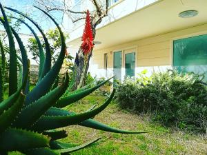 Holiday home Otranto Vacanza Facile - Borgo