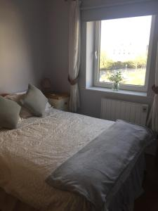 Spanish Arch City Centre Duplex Apartment, Case vacanze  Galway - big - 11