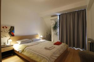 Stay Nexus Near Airport 2, Appartamenti  Sofia - big - 12