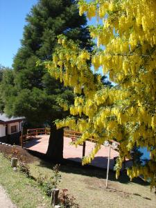 Don Ricardo Mari Mari, Alpesi faházak  San Carlos de Bariloche - big - 10