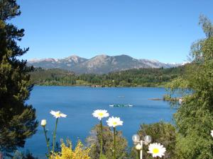 Don Ricardo Mari Mari, Alpesi faházak  San Carlos de Bariloche - big - 28