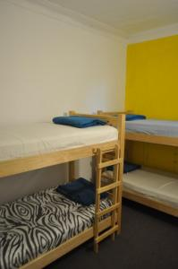 Bed in 4-Bed Dormitory Room III