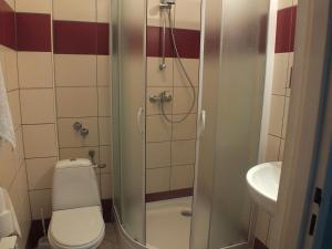 Hotel Pod Trzema Różami, Hotely  Sanok - big - 16