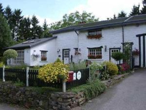 Shamrock Guesthouse