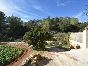 Can Maximo, Holiday homes  Sant Mateu d'Albarca - big - 10