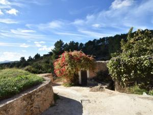 Can Maximo, Case vacanze  Sant Mateu d'Albarca - big - 1