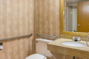 Quality Inn & Suites Detroit Metro Airport, Hotely  Romulus - big - 9