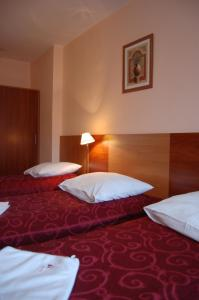 Hotel Boruta