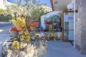 Hotel Terme Tirrenia - AbcAlberghi.com