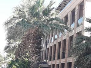 Nazar Hotel, Hotels  Didim - big - 11