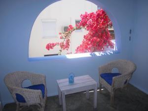 Galazia Studios, Residence  Naxos Chora - big - 28