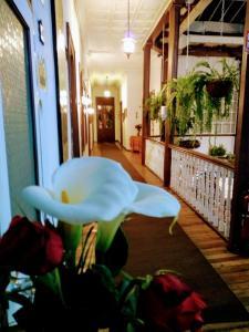 Casa Macondo Bed & Breakfast, B&B (nocľahy s raňajkami)  Cuenca - big - 99