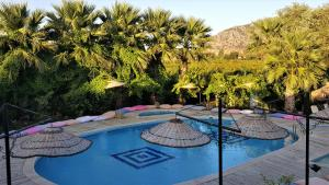 Bahaus Resort, Pensionen  Dalyan - big - 76