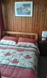Hostal Valentino, Hotel  Villarrica - big - 48