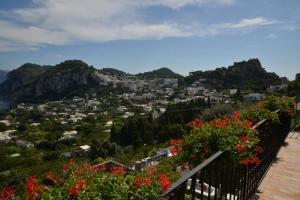 Villa Aiano, Vily  Capri - big - 8