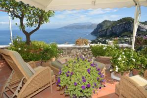 Villa Aiano, Vily  Capri - big - 1