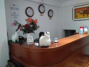Illary Inn, Hotels  Machu Picchu - big - 35