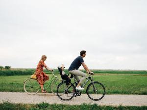 Pension Drahteselböck, Vendégházak  Ruszt - big - 19