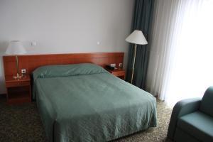 Hotel Aquapark Žusterna, Hotely  Koper - big - 15