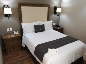 Standard Double Room - 1 Bed