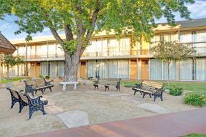 Super 8 Meadow Wood Courtyard, Отели  Рено - big - 1