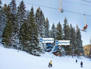 Apartments Sema, Apartmanok  Jahorina - big - 30