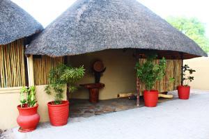 Mango Guest House, Penzióny  Ongwediva - big - 9