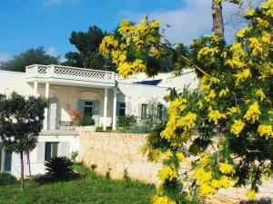 Villa Rosato, Apartmány  Selva di Fasano - big - 152