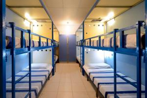 Bunk Bed in 9-Bed Dormitory Room