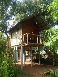 Sanjana Home Stay, Guest houses  Habarana - big - 47