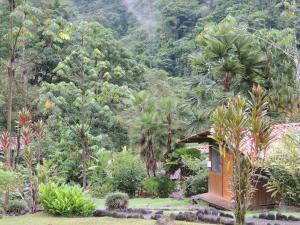 Pacuare River Lodge, Lodges  Bajo Tigre - big - 53