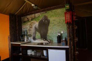 Neushoorn en Gorilla