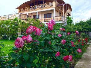 Guest House Pegas, Pensionen  Pizunda - big - 9