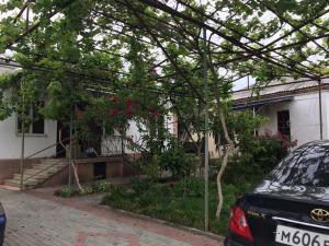 Guest House Pegas, Penzióny  Pizunda - big - 18