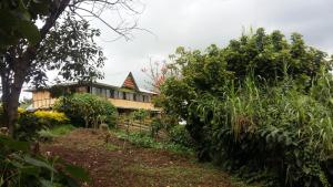 Gorilla Closeup Lodge, Lodges  Kisoro - big - 50