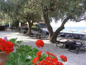 Megalos Mourtias, Ferienwohnungen  Alonnisos Old Town - big - 29