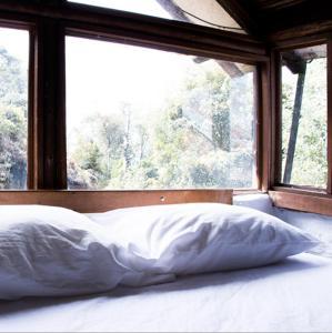 Pintos Hostal, Гостевые дома  Богота - big - 22