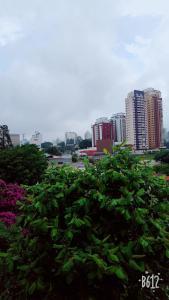 Great, Safe and Beautiful Morumbi, Ubytování v soukromí  Sao Paulo - big - 5