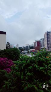 Great, Safe and Beautiful Morumbi, Ubytování v soukromí  Sao Paulo - big - 6
