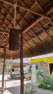 Hotelito Gisell,as, Hotely  Holbox Island - big - 29
