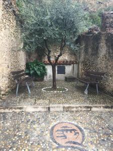 Chambre d'hôtes de charme La Belle Vue, Panziók  Roquebrune-Cap-Martin - big - 32