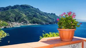 Villa Il Lupo Felice - AbcAlberghi.com