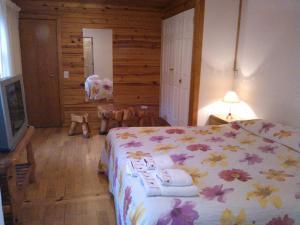 Hosteria Lekun Lekun, Penziony – hostince  Villa La Angostura - big - 5