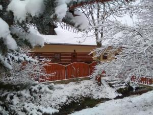 Rybvelvet, Prázdninové domy  Skořenice - big - 105