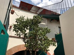 Meson del Penasco, Apartmány  Oaxaca City - big - 9