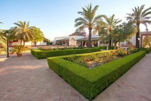 Hacienda de Orán, Hotely  Los Palacios y Villafranca - big - 23